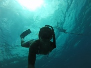 Spearfishing Hans Lollik off of St. Thomas