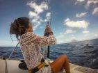 Pulling in a Spanish Mackerel