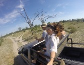 Game Drives in Botswana