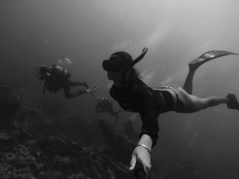 """""""Free""""Diving with Amoray Scuba Charters"""