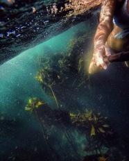 Underwater Vibes